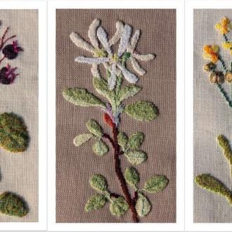 Die Alpenblumen der Sabine W.