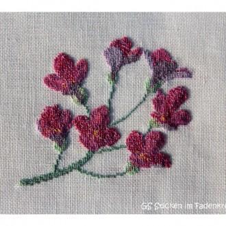 Alpenblumen – 3. Fortsetzung