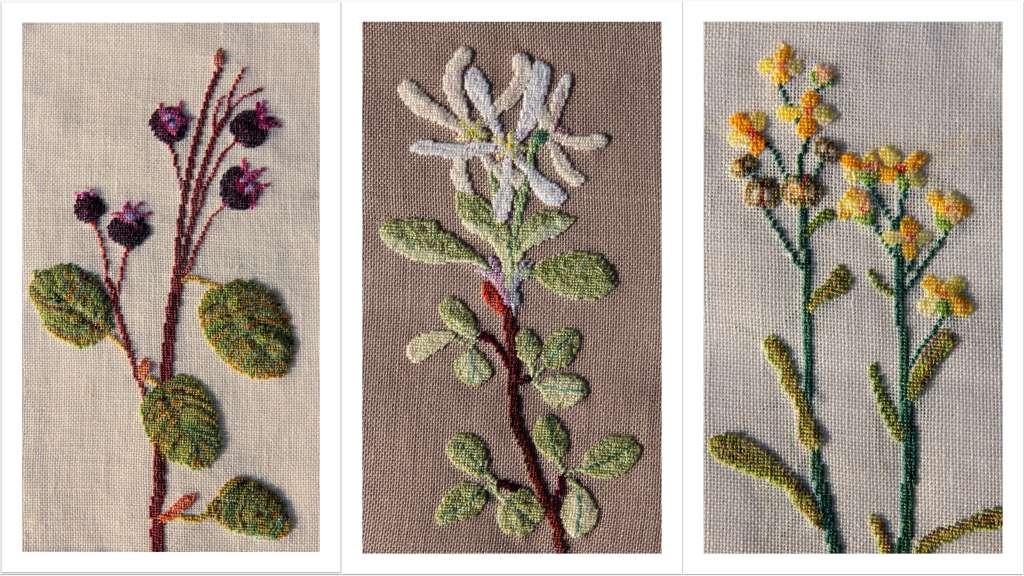 Blumenbilder SW Collage1